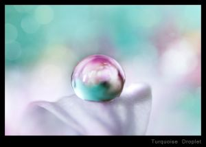 Turquoise Droplet.jpg