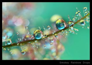 c3-Smokey Rainbow Drops.jpg